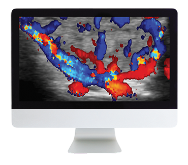 Thyroid Imaging Online Course
